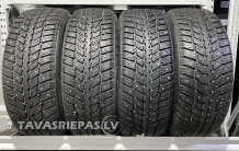 Roadstone Win Guard 231 225/55 R17